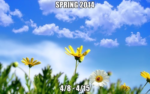 spring,weather,seasons