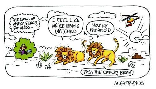 lions paranoia web comics - 8150888448