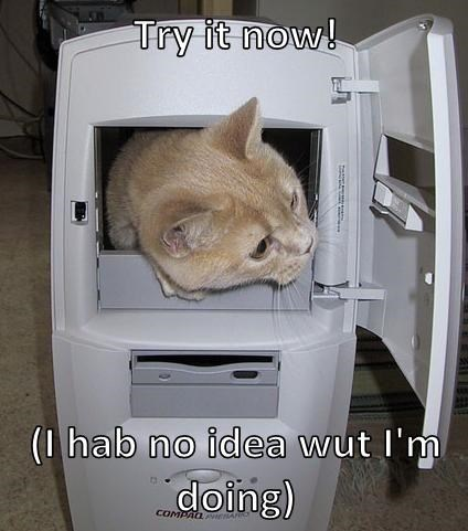 computers fix Cats funny