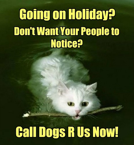 Going on Holiday? Don't Want Your People to Notice? Call Dogs R Us Now!