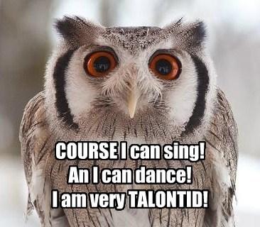 puns,sing,owls,dance