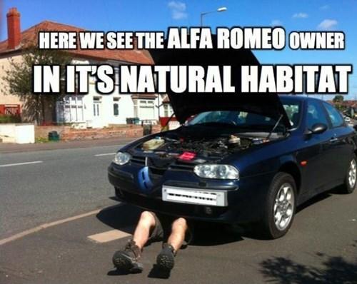 cars alfa romeo - 8152070656