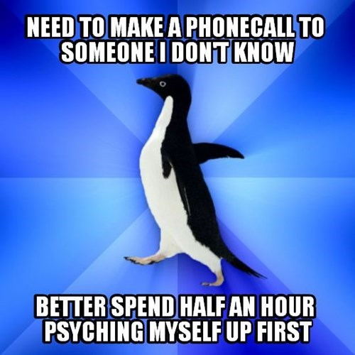 socially awkward penguin phone calls - 8152416768