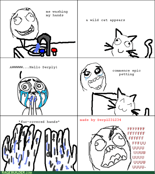Cats,fur,rage
