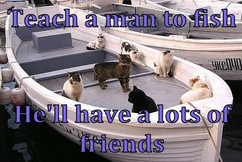 Cats friends fishing funny Words Of Wisdom - 8152595968