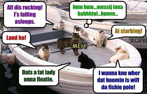 Land ho! Dats a fat lady onna floatie. I wanna kno wher dat hoomin is wiff da fishie pole! Ai starbing! All dis rocking! I's falling asleeps. hum hum...messij inna bahhhtol...humm... MEH!