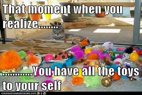 Cats cute funny toys - 8153807872