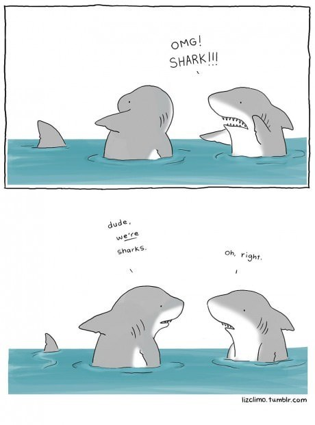 fear,sharks,web comics