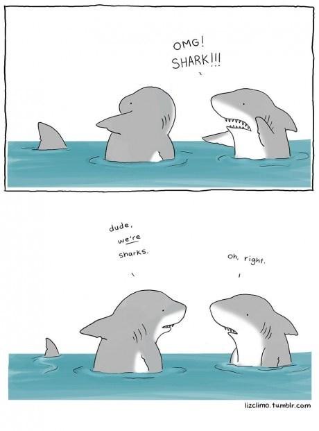 fear sharks web comics - 8154006016