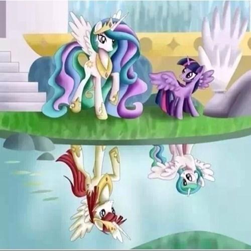 MLP,princess celestia,twilight sparkle