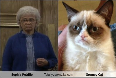 Sophia Petrillo Totally Looks Like Grumpy Cat