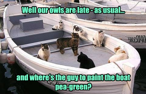 Well our owls are late - as usual... and where's the guy to paint the boat pea-green?