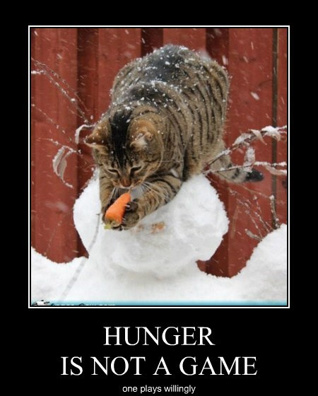 HUNGER IS NOT A GAME