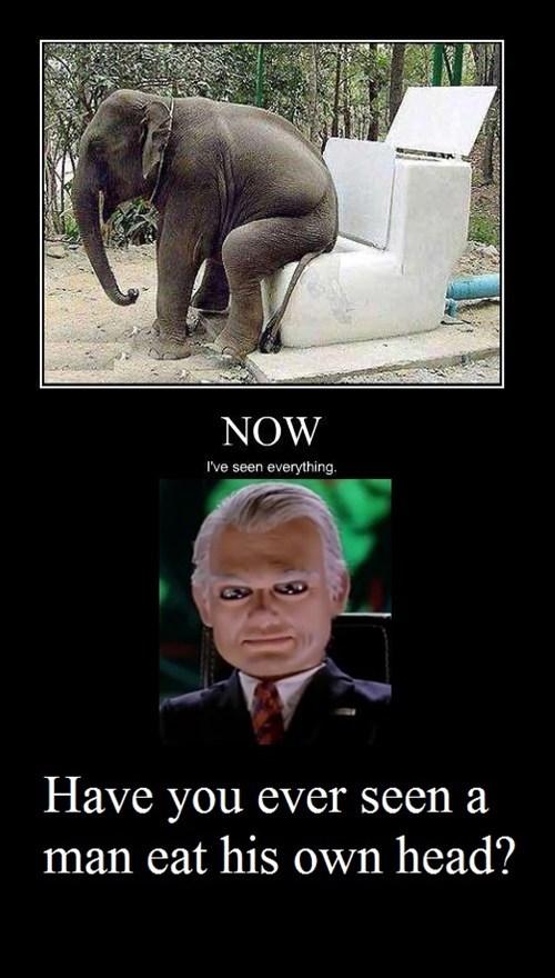 wtf elephant toilet funny - 8157862912