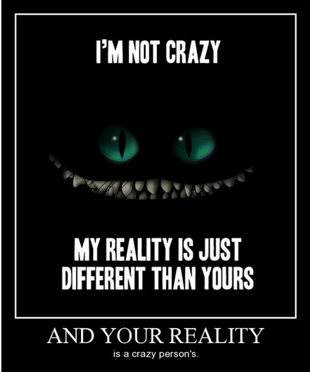 crazy,cheshire cat,reality,funny