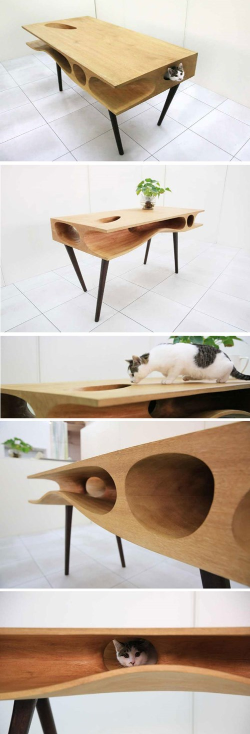 art architecture Cats table
