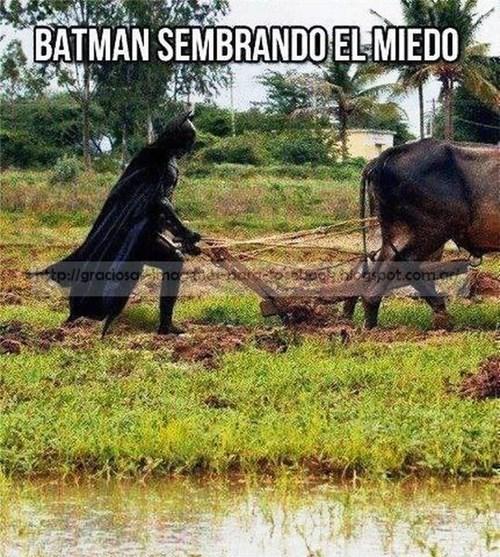 Memes bromas - 8158268416