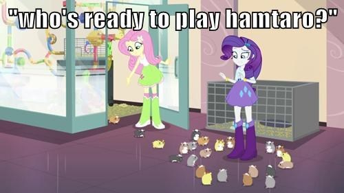 equestria girls hamsters hamtaro - 8158511104