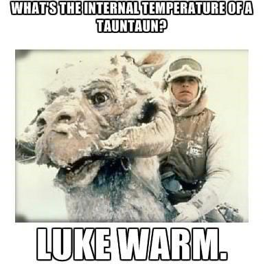 puns star wars luke skywalker tauntaun - 8158731776