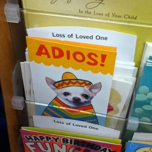 cards dogs fail nation - 8158775552