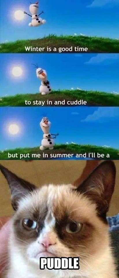 cartoons disney frozen Grumpy Cat