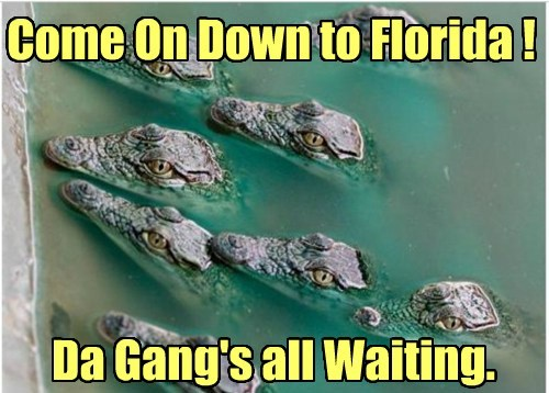Come On Down to Florida ! Da Gang's all Waiting.
