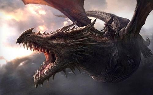 books grrm dragons - 8159442944