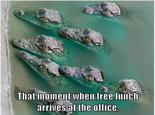 That moment when free lunch arrives at the office.