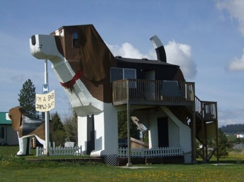 architecture dogs design neat - 8159702784