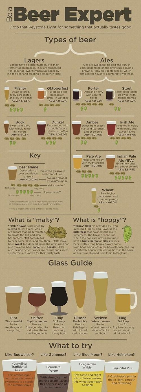 beer infographic expert - 8159797504