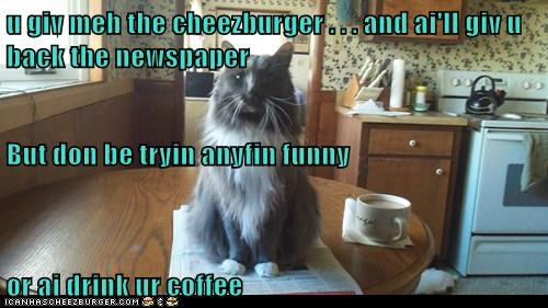 u giv meh the cheezburger . . . and ai'll giv u back the newspaper But don be tryin anyfin funny or ai drink ur coffee