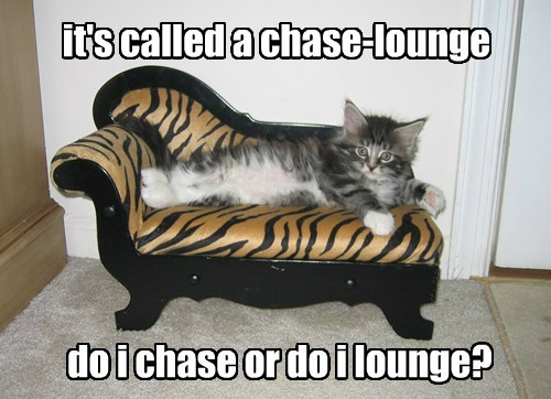 it's called a chase-lounge