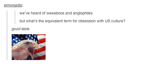 american culture,good taste,tumblr