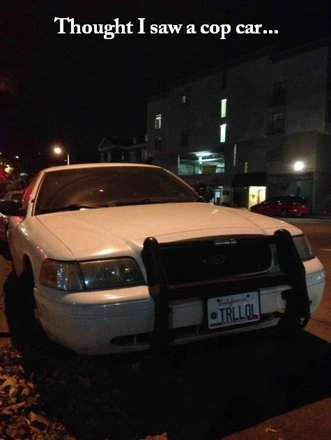 cops police police cars - 8160520448