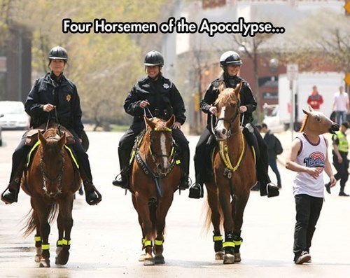 horse mask police horses - 8160523008
