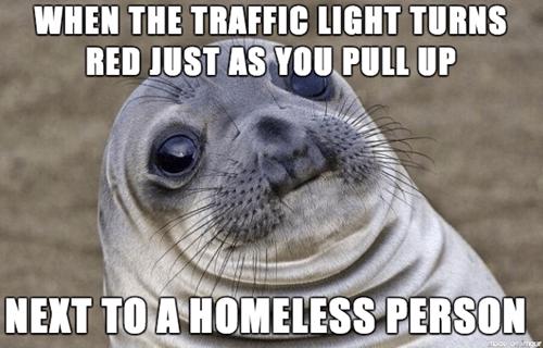 awkward situation seal driving awkward seal traffic - 8160541696