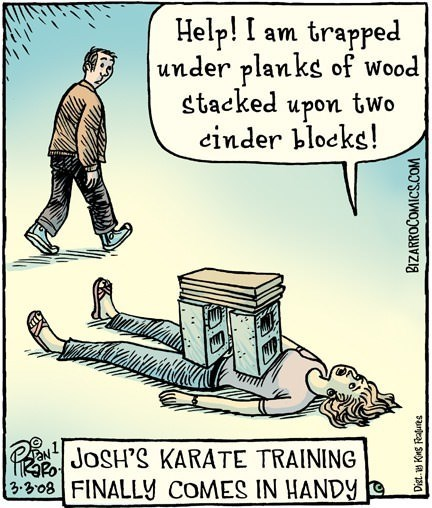 josh karate wood web comics - 8160589568