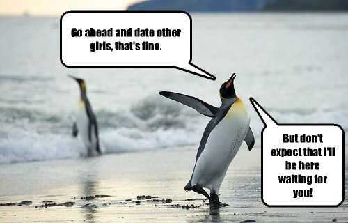penguins sharks metaphor dating - 8160844032