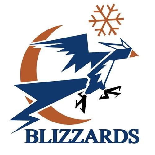 Logo - BLIZZARDS