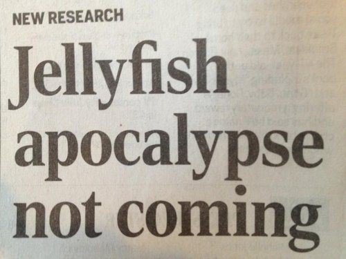 headline jellyfish newspaper fail nation g rated