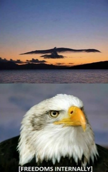 clouds,freedom,eagles