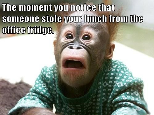 The moment you notice that someone stole your lunch from the