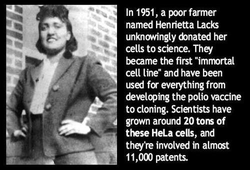 henrietta lacks,medicine,cells,science
