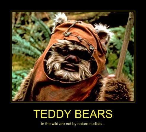 clothes,funny,ewok,teddybear