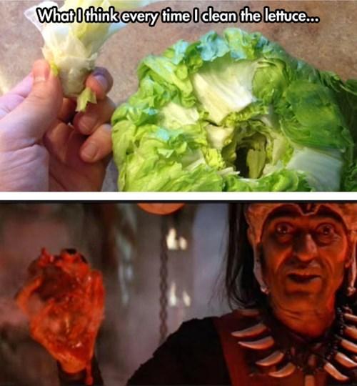 food Indiana Jones salad lettuce - 8163664896