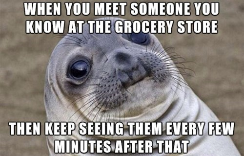 awkward seal,awkward situation seal