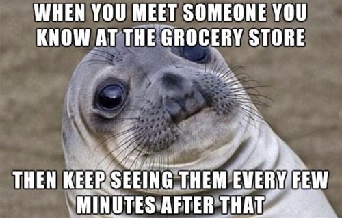 awkward seal awkward situation seal - 8163711744