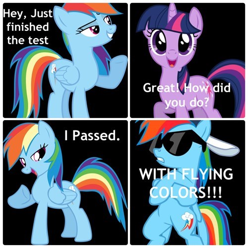 tests puns rainbow dash - 8164121856