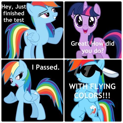 tests puns rainbow dash - 8164121856