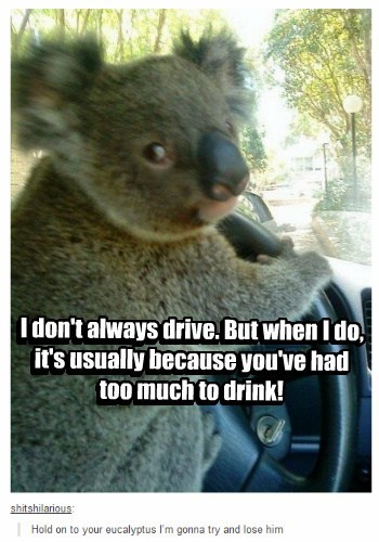 I don't always drive. But when I do, it's usually because you've had too much to drink! I don't always drive. But when I do, it's usually because you've had too much to drink!